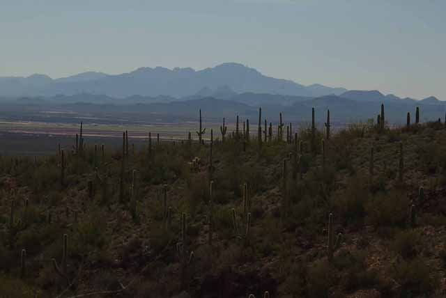 mountain view from the AZ-Sonora Desert Museum