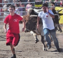 the 2012 Cave Creek Running of the Bulls