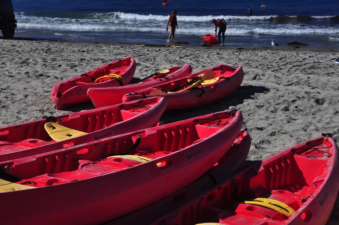 kayaks on the beach for rent