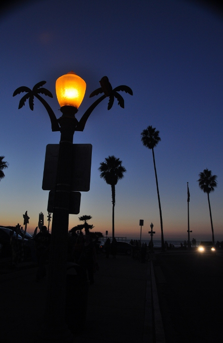 Ocean Beach streetlight