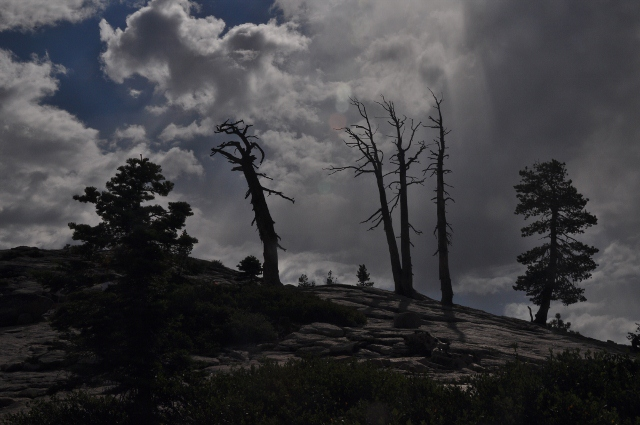 On Sentinel Dome