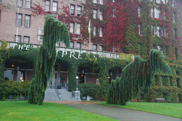 the trees in front of the empress hotel