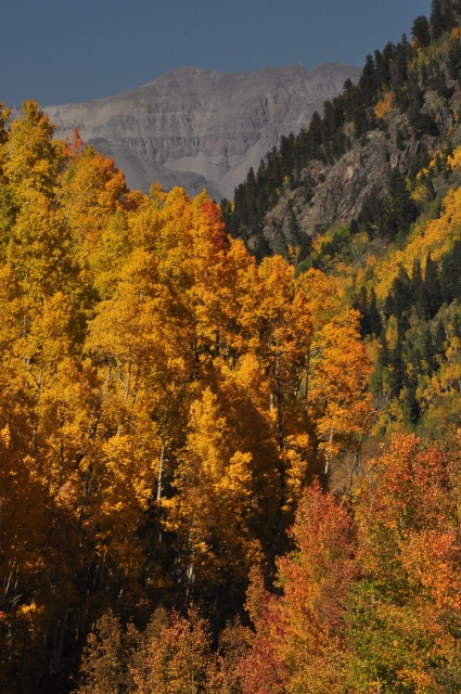 fall colors on highway 145