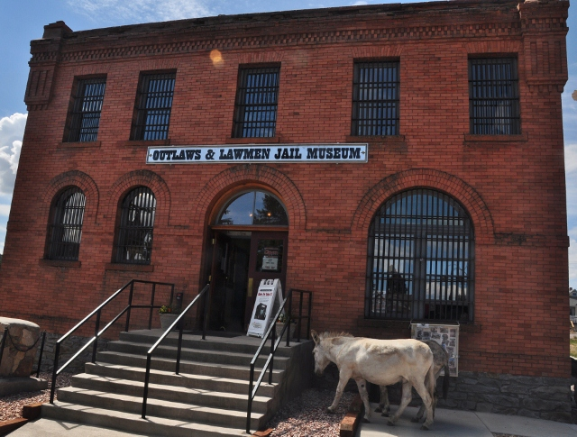 Cripple Creek building with donkeys out front