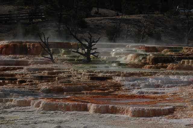 The Terraces, Yellowstone geysers