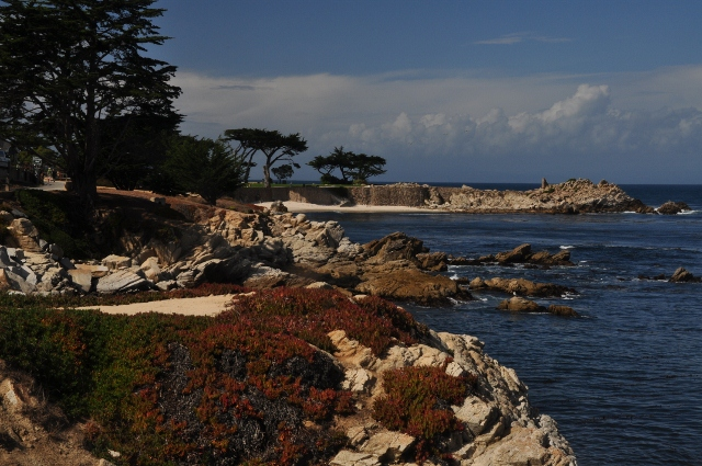 Lover's Park, Pacific Grove