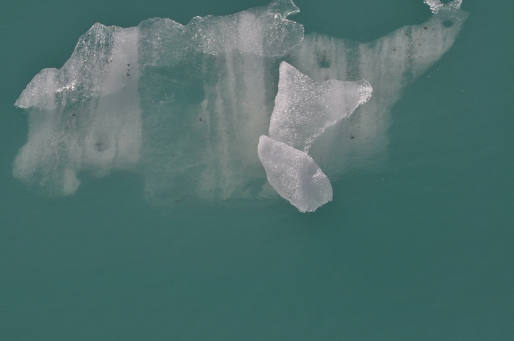 clear floating iceberg in green waters