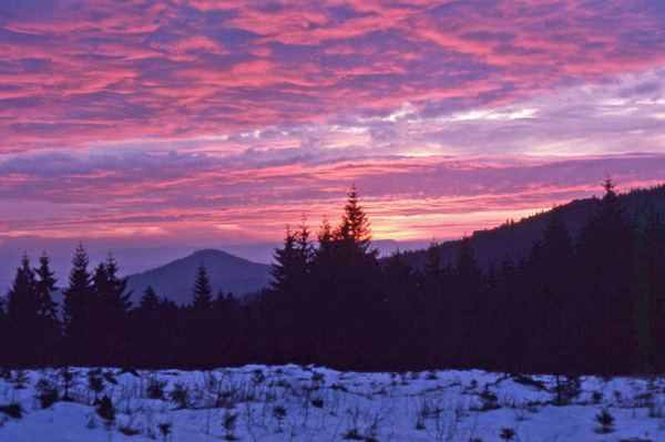 a winter sunset in the Bavarian Natl Forest
