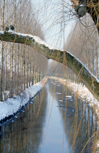 vils river in winter