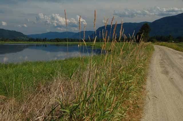 The Clark Fork River Delta opening to Lake Pend Oreille on Scenic Byway 200