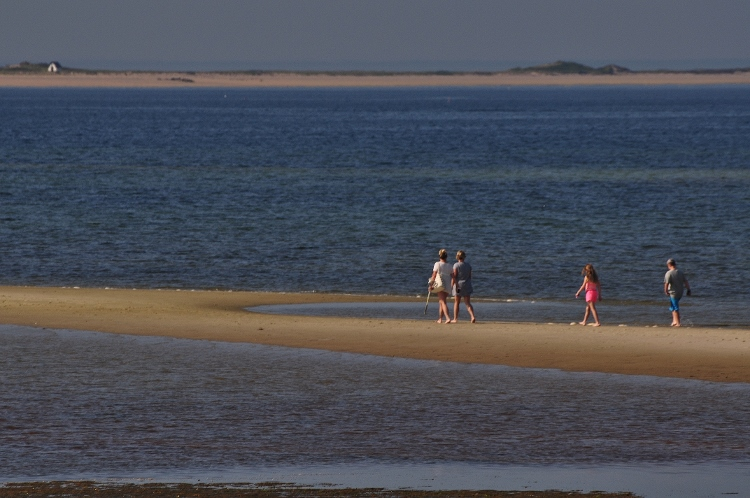 people walking sand bar