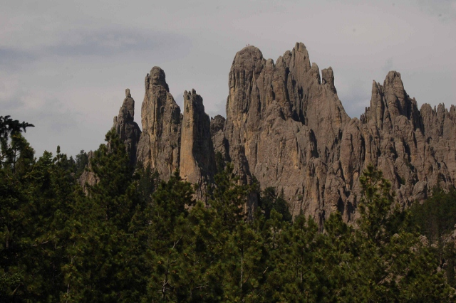 the Black Hills along Needles Highway