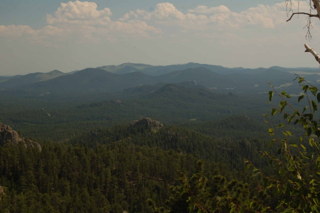 Black Hills scenic highway