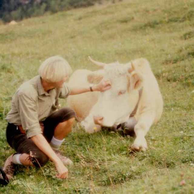 me petting a cow