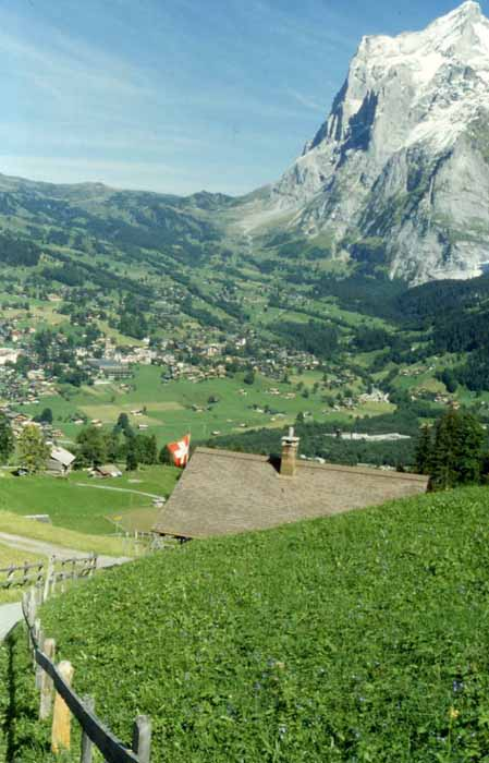 the town of grindelwald
