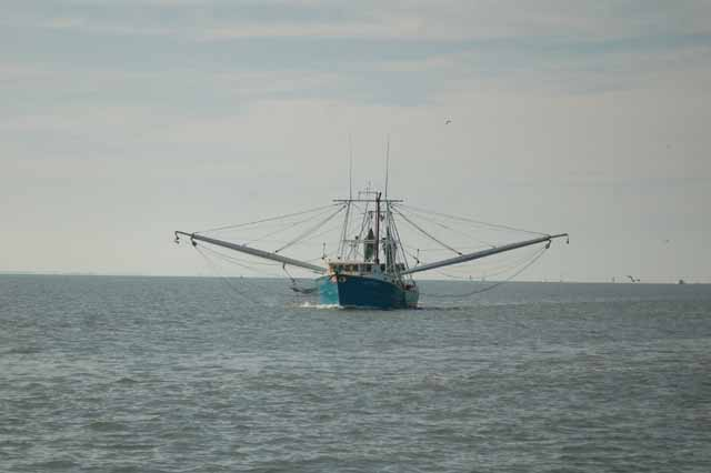 shrimp boat in galveston bay