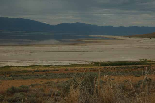 the salt shore that makes up Antelope Island