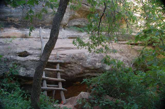 ladder to canyon floor
